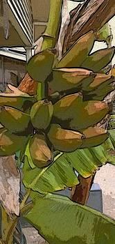 Bananas At My House by Ilah Watkins