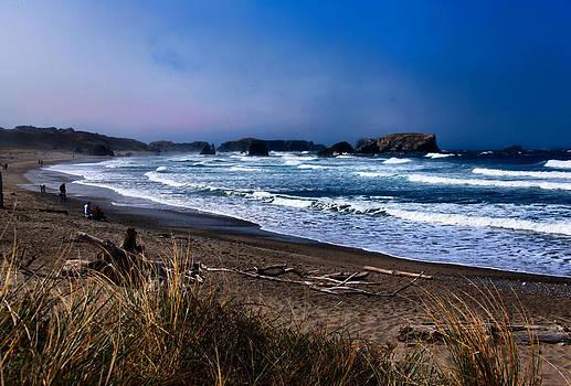 Bandon Beach Blues by Sally Bauer