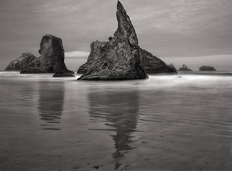 Bandon Beach In Black And White by Ray Still