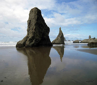 Bandon Beach Oregon Rock Monoliths by Michele Avanti