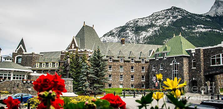 Alanna DPhoto - Banff Views