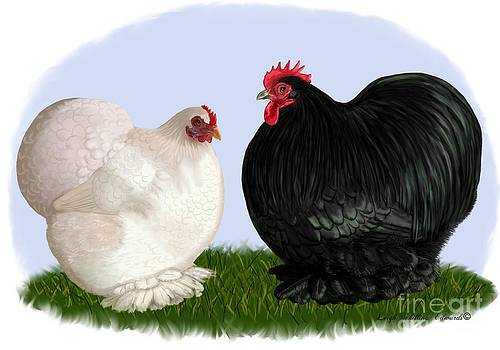 Bantam Cochin Rooster and Hen by Leigh Schilling