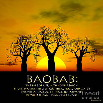 Walter Oliver Neal - Baobab - The Tree Of Life