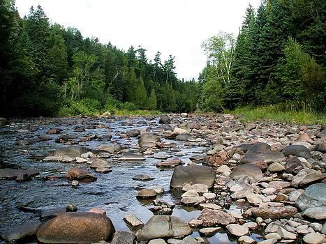 Baptism Creek by Bridget Johnson