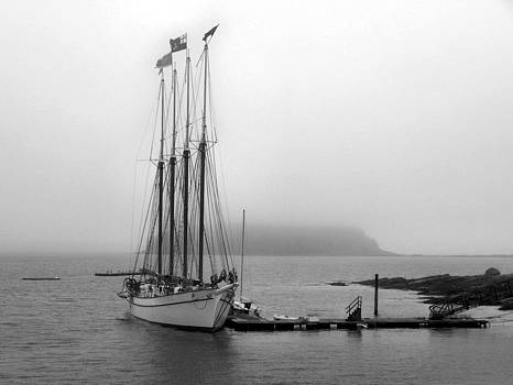 Gene Cyr - Bar Harbor Ship
