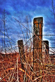 William Havle - Barb Wire Fences