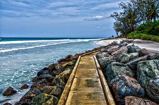 Barbados Beach by Lamyl Hammoudi