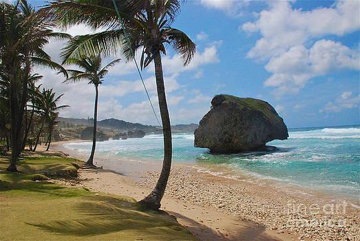 Barbados by Blake Yeager