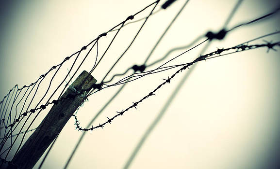 Barbed by Off The Beaten Path Photography - Andrew Alexander