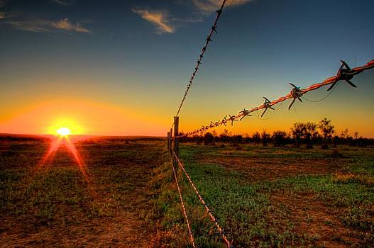 Barbed Wire Fence Sunset by Shane Dickeson