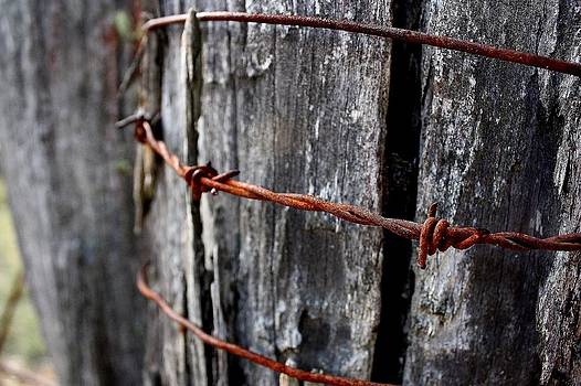 Barbed wire on a post by Ian  Ramsay