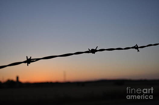 Barbed Wire Over The Heartland By Brigette Hollenbeck