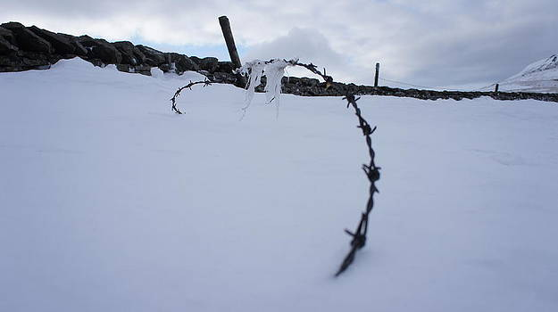 Barbed Wire by Riley Handforth