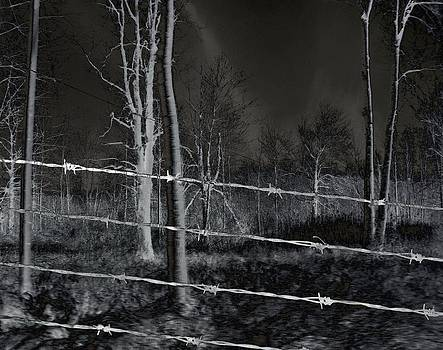 Gothicrow Images - Barbed Wires