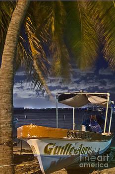 Agus Aldalur - Barca en la playa