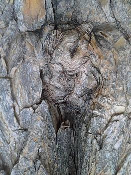 Bark VII Woman by Iamthebetty Tbone