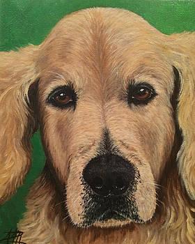 Barkley by Ana Marusich-Zanor
