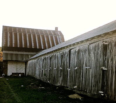 Barn 2 by Lesley McCormack