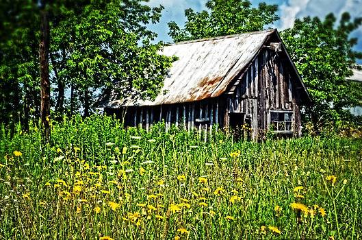 Barn and Flowers by Cheryl Cencich