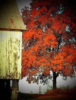 Barn and Autumn Tree by Joyce Kimble Smith