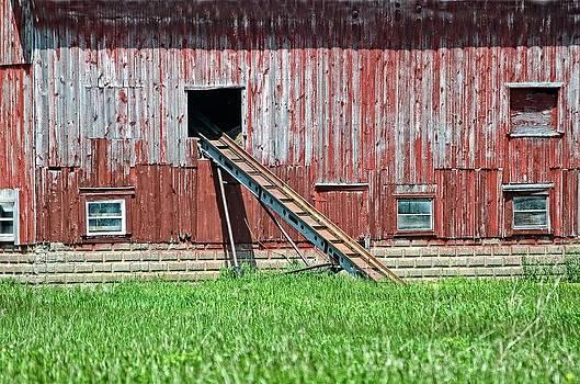 Barn And Ladder by Cheryl Cencich