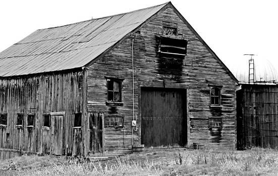 Barn and Silo by Sasha Wolfe