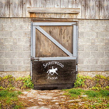 Barn Door Spiritwood by Heather Swan