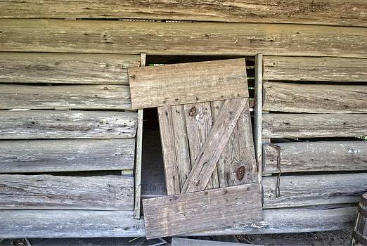 Barn Door2 by Michael Rushing