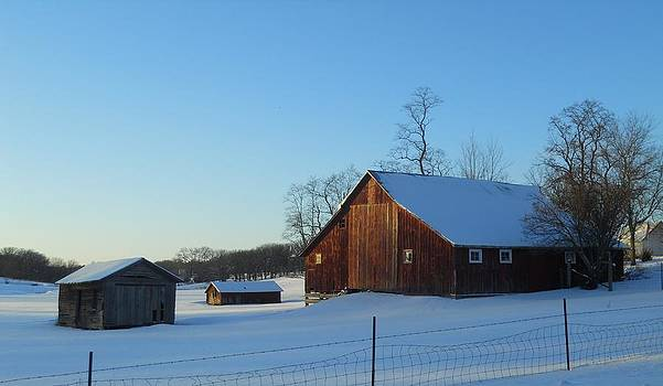 Barn Family by Coleen Harty