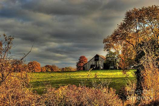 Barn Landscapes  by Thomas Danilovich