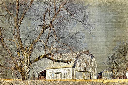 Liane Wright - Barn - Missouri