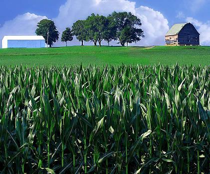 Barn on the Hill by Virginia Folkman