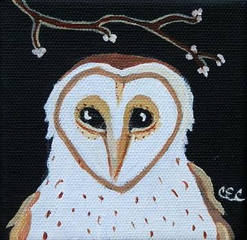 Barn Owl by Carolyn Cable