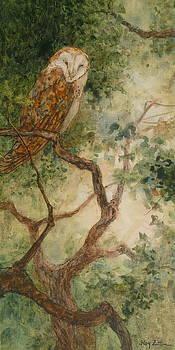 Barn Owl by Floy Zittin