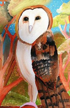 Artists With Autism Inc - Barn Owl