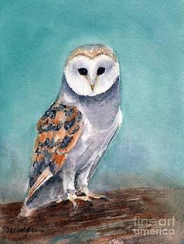 Barn Owl by Suzanne Krueger
