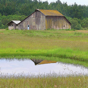 Art Block Collections - Barn Reflection
