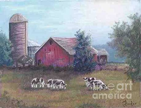 Barn Scene Holsteins by Ann Becker