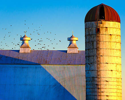 Barn Silo by Eleanor Ivins
