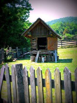 Barn Structure by Jo Anna Wycoff