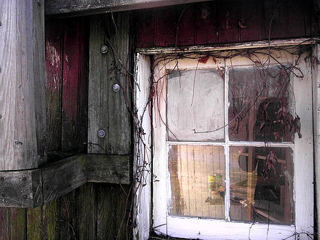 Barn Window by Sharon Costa