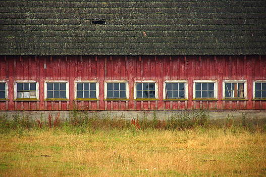 Barn Windows by Thomas Taylor