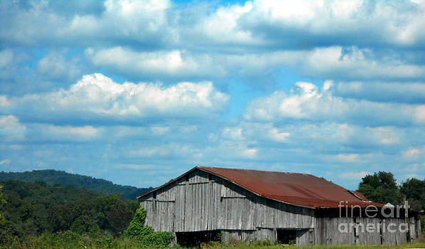 Barn with a Red Roof by Eva Thomas