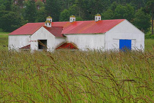 Art Block Collections - Barn with Blue Door