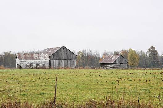 Valerie Kirkwood - Barns in the Mist