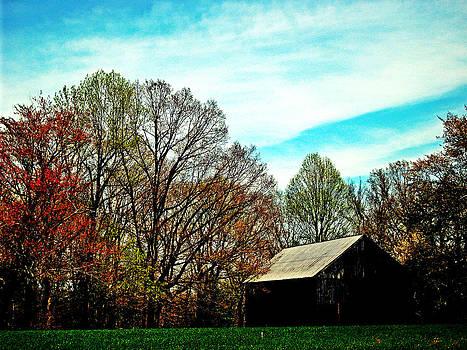 Kevin D Davis - Barnyard Colors