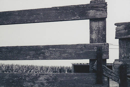 Barnyard Fence by Kassie Nelson