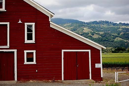 Barnyard vineyard by Mamie Gunning