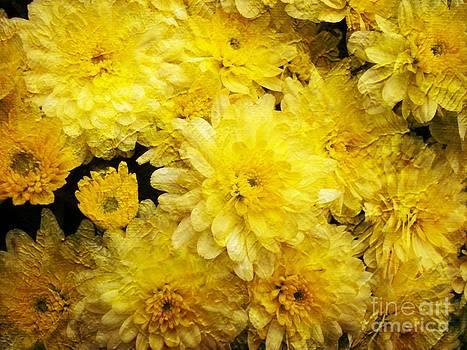 Baroque Yellow Mums by Spirit Baker