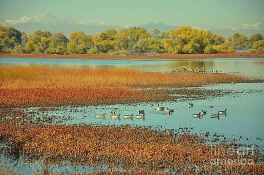 Barr lake and longs peak by Reza Mahlouji